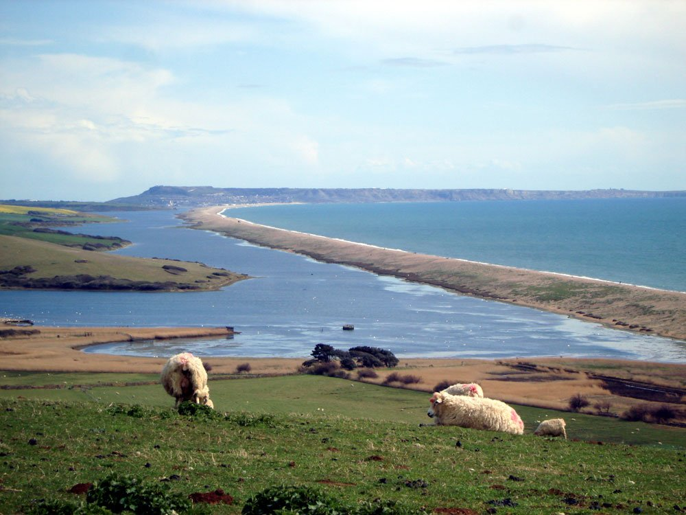 portland-from-abbotsbury